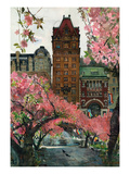 Cherry Blossoms Prints by Noel Miles