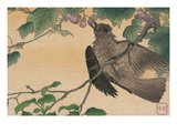 Bird Eating a Grape Posters by Kuwagata Kesai
