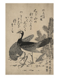 Wildfowl and Pine Print by Katsukawa Shunsei