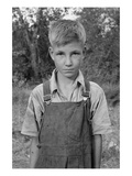 Squatter Boy Print by Dorothea Lange
