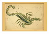Scorpio Photo by Aspin Jehosaphat