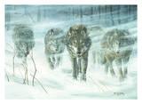 Don Li-Leger - Wolfpack In Snowstorm Reprodukce