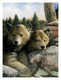 Brown Bear Cubs Prints by Fernandez Amneris