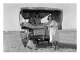 Searching for Work in the Cotton Fields Kunstdrucke von Dorothea Lange