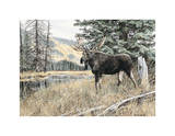Chilcotin Country Prints by Andrew Kiss