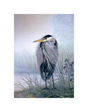 Brooding Heron Poster by Don Li-Leger