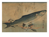 Striped Mullet Prints by Ando Hiroshige