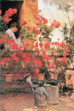 Red Geraniums Print by Childe Hassam