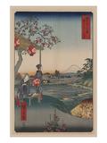 Ando Hiroshige - Fujimi Teahouse at Zoshigaya (Zoushigaya Fujimi Chaya) Plakát