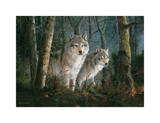 Wolves In Mist Prints by Amneris Fernandez