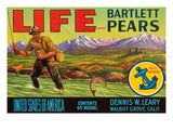 Life Brand Bartlett Pears Posters by  Schmidt Lithograph Co
