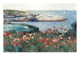 Poppies, Isle of Shoals Affiches par Childe Hassam