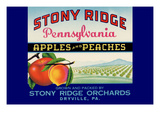 Stony Ridge Pennsylvania Apples and Peaches Prints