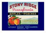 Stony Ridge Pennsylvania Apples and Peaches Posters