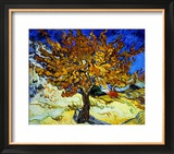 Mulberry Tree, c.1889 Framed Giclee Print by Vincent van Gogh