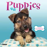 Puppies - 2013 Wall Calendar Calendars
