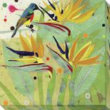 Hummingbird 2 Stretched Canvas Print