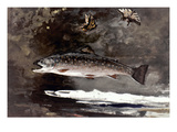 Homer: Trout, 1889 Posters by Winslow Homer