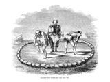 Sumo Wrestling, 1853 Prints
