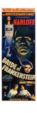 Bride of Frankenstein 1935 Premium Giclee Print