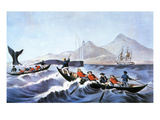 Whale Fishery, 'Laying On' Print by  Currier & Ives