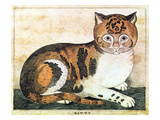 Folk Art: Cat Giclee Print by George White
