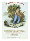 Frederick Douglass Black History Biographical Timeline Fine Art Poster
