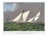 America's Cup, 1885 Giclee Print by  Currier & Ives