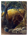 Palmer: Apple Tree Poster by Samuel Palmer