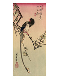 Magpie, 19th Century Giclee Print by Ando Hiroshige