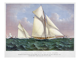 America's Cup, 1886 Poster by  Currier & Ives