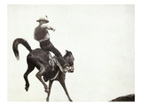 Bucking Bronco, c1888 Art by John C.H. Grabill