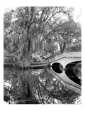 South Carolina: Lake, c1900 Prints by William Henry Jackson