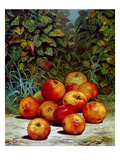 Apples, 1868 Giclee Print by  Currier & Ives