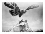 Mothra, 1961 Giclee Print