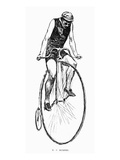 Penny Farthing Bicycle Prints
