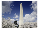 Washington Monument, 2007 Posters by Carol Highsmith