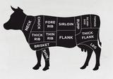 Cow Giclee Print