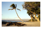 Hawaii: Oahu, 2005 Prints by Carol Highsmith