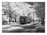 New Orleans: Streetcar Giclee Print by Carol Highsmith