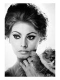 Sophia Loren (1934-) Prints