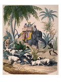 Hunting: Big Game, 1852 Posters