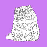 Fat Fluffy Cat Prints by Anna Nyberg