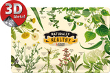 Nostalgic Pharmacy Naturally Healthy Plaque en métal