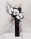 Delicatesse d'Orchidees II Affiches par Olivier Tramoni