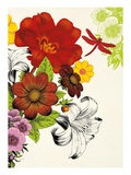 Vibrant Bouquet Giclee Print by Devon Ross