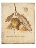 Gilded Oak Print by Arnie Fisk