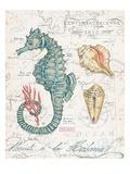 Centuria Seahorse Poster von Chad Barrett