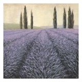 Lavender Horizon Detail Giclee Print by James Wiens