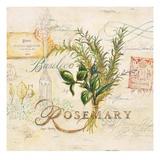 Tuscan Herbs Prints by Angela Staehling